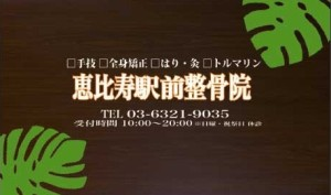 S__33497105 - コピー (3)